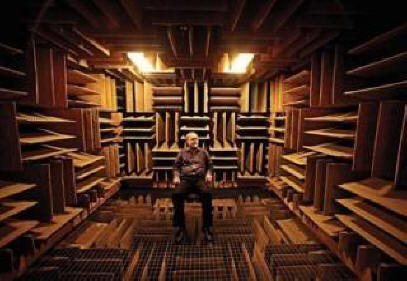The quietest place in the world will drive you crazy
